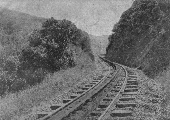 Maxwell_Cutting on Rimutaka Incline.tif